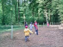 action de plantation de chênes, de merisiers et de chataigniers dans la forêt de Chevigny Saint Sauveur.  Avec les enfants du Centre de Loisirs de la ville
